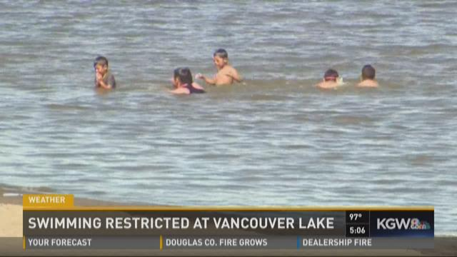 Kids were swimming in Vancouver Lake on Friday.
